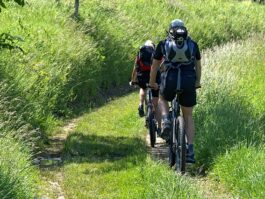 cyclists-1445700_640